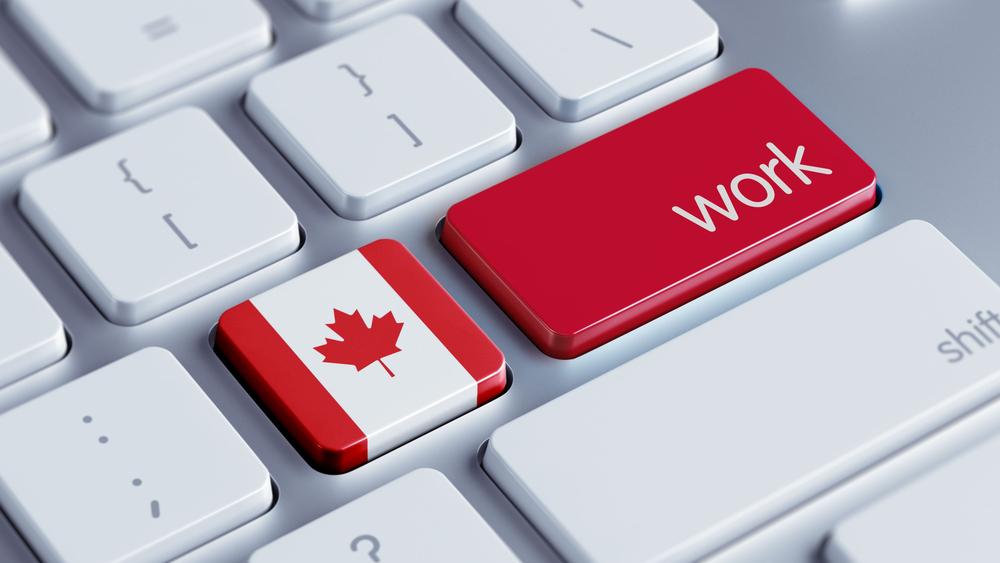Work in canada Trabalho no Canadá - O que é e como funciona a LMIA? Trabalho no Canadá - O que é e como funciona a LMIA? Work in canada