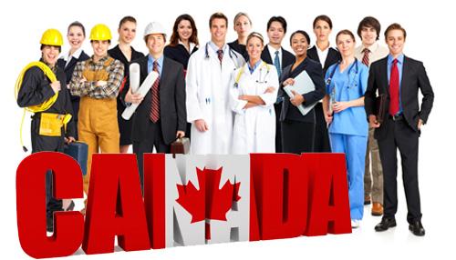 Workers Trabalho no Canadá - O que é e como funciona a LMIA? Trabalho no Canadá - O que é e como funciona a LMIA? canadaworkers