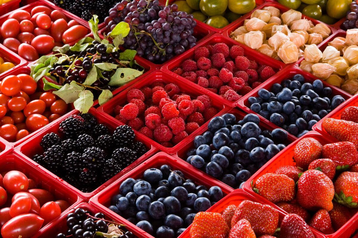 slide_MJ-042_free  Inflação no Canadá desacelera no mês de maio com queda no preços dos alimentos slide MJ 042 free