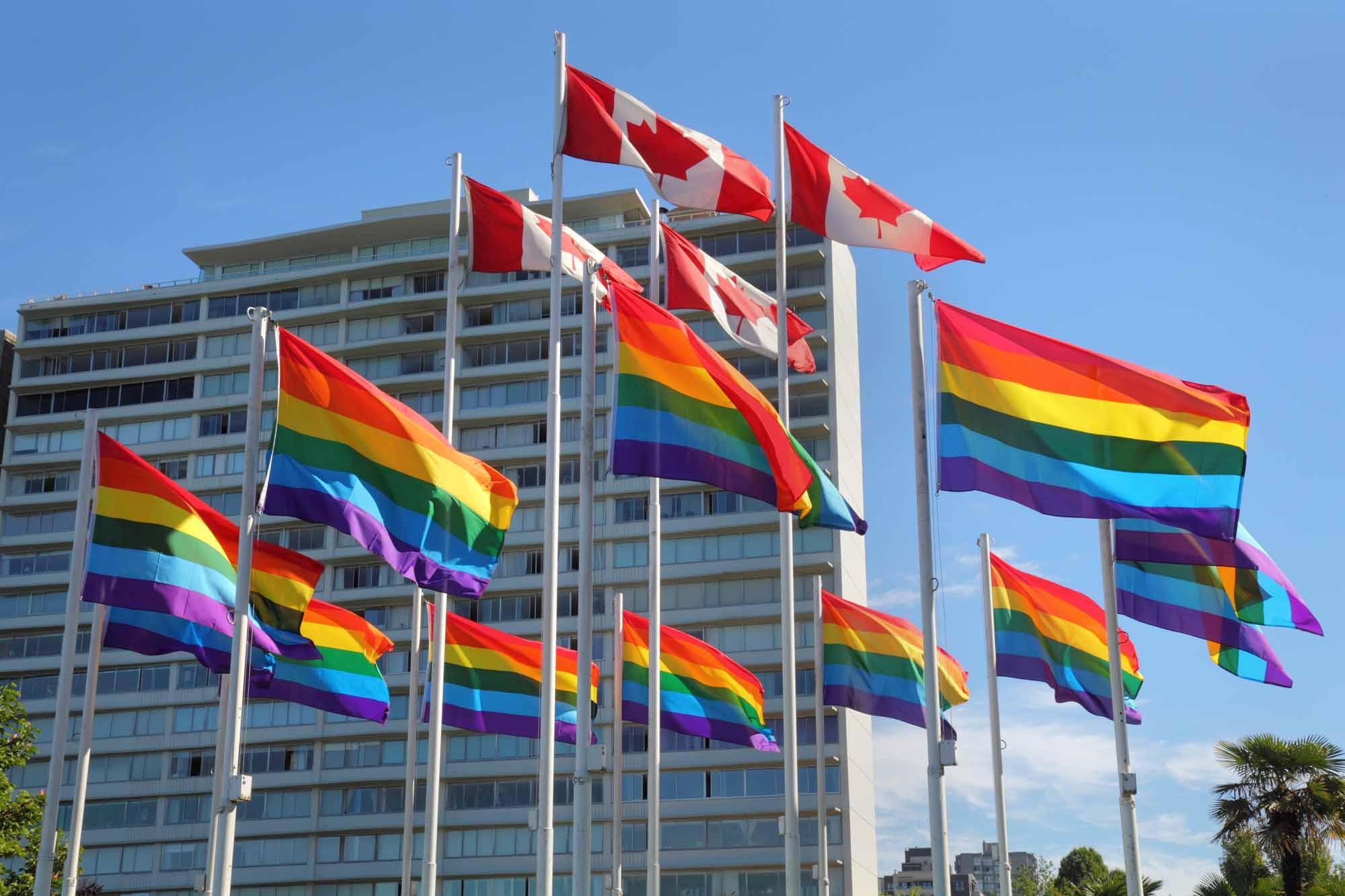 Maioria dos Canadenses acreditam que um Primeiro-Ministro Gay poderá ser eleito em 10 anos 49936680 e046 4501 8593 85b8bc94d071